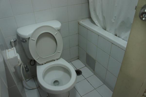 キング ロイヤル ガーデン インのトイレ・バスタブ画像
