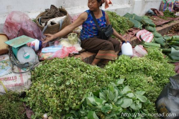 『ルアンパバーン朝市』葉物野菜画像
