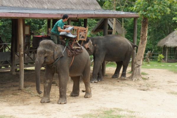 『エレファントビレッジ(Elephant Village)』画像