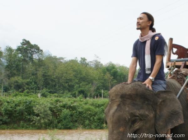 ラオス・象に乗る画像