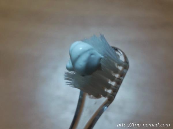 歯ブラシにつけた『シャボン玉せっけんハミガキ』画像