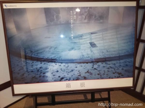 箱根湯本「萬翠楼 福住」「一円の湯」画像