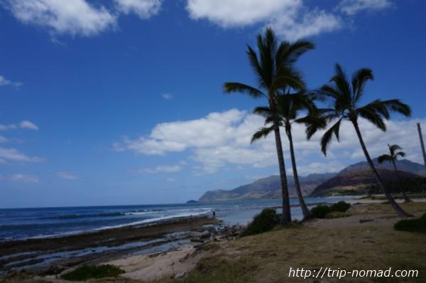 ハワイ『ワイアナエ』海岸線画像