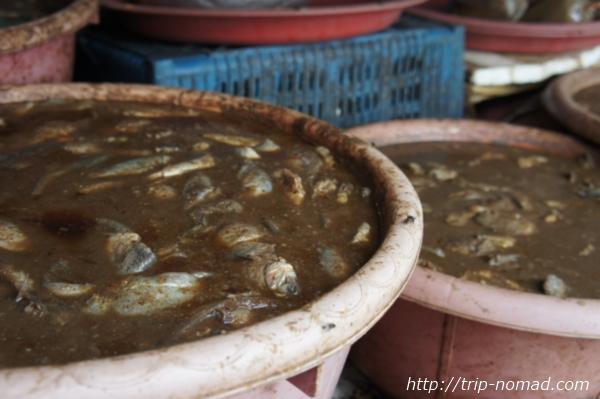 『タラート・サオ市場』魚醤画像