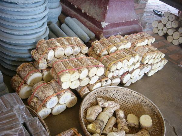 『ミャンマー・タナカ』の木画像