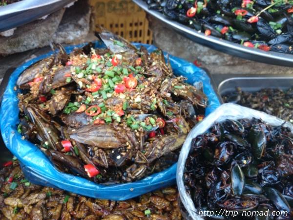 カンボジア『虫料理』タガメ画像