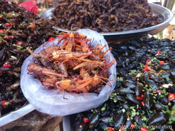 カンボジア『虫料理』バッタ画像