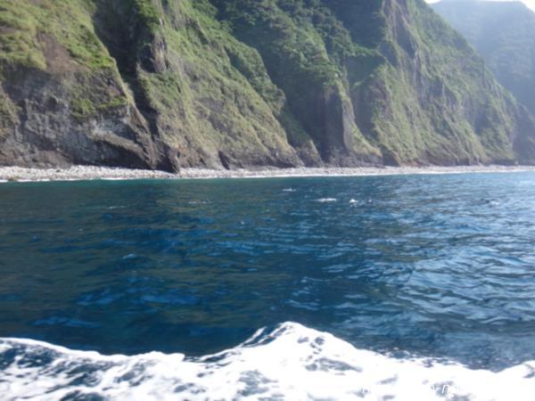 御蔵島&海画像