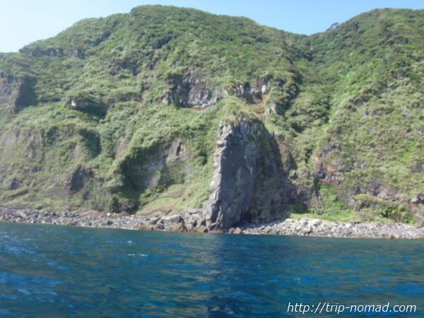 御蔵島の原生林画像