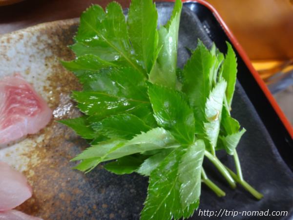 御蔵島『明日葉』画像