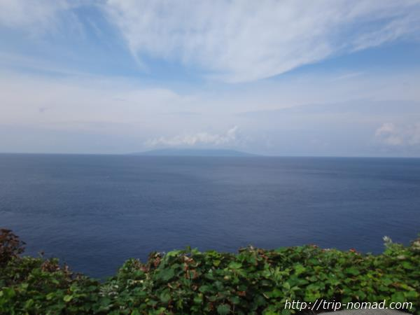 御蔵島『イルカの見える丘』画像