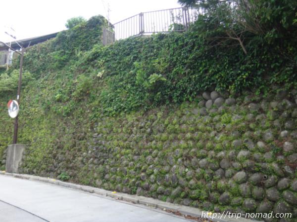 御蔵島『玉石のかべ』画像