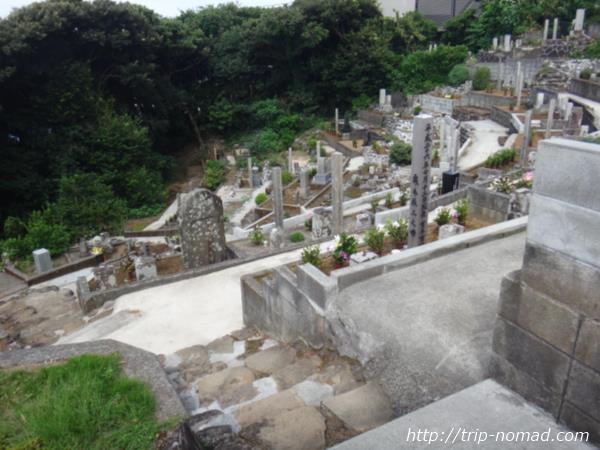 御蔵島『墓地』画像