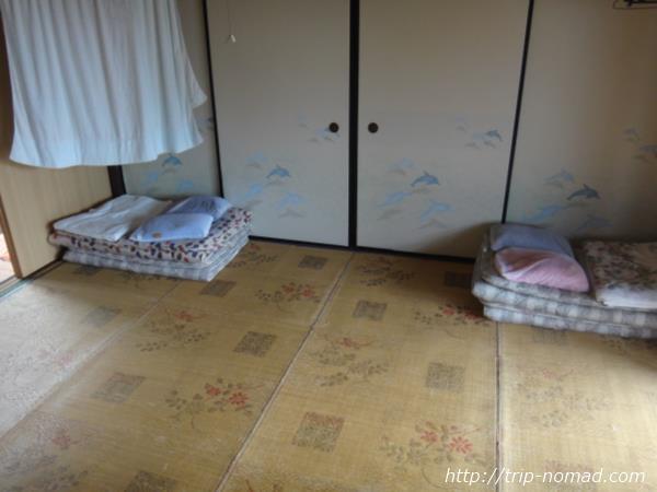 御蔵島『まるごと御蔵島ツアー』民宿二郎丸画像