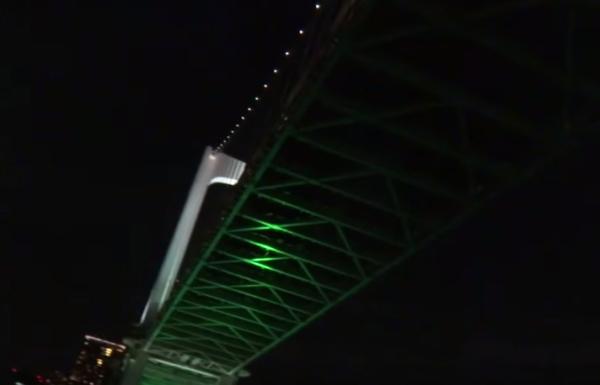 御蔵島行き東海汽船「橘丸」レインボーブリッジの真下画像
