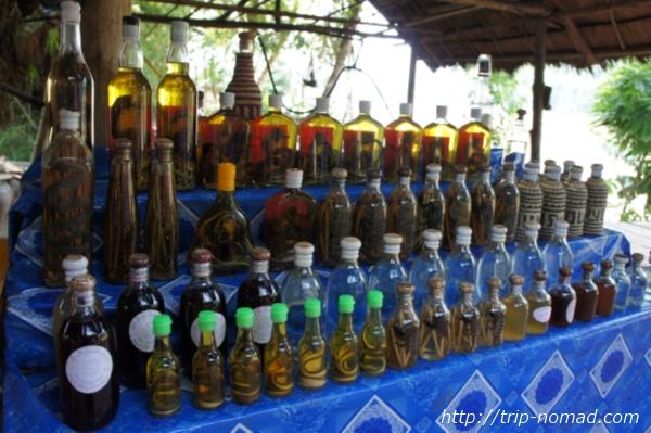 ラオス『ルアンパバーン』食材ゲテモノ酒画像