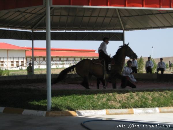 『トルクメニスタン・アハルテケ』騎馬民族の勇敢なパフォーマンス画像