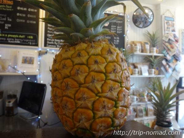 『ハワイアン・クラウン・プランテーション』店内パイナップル画像