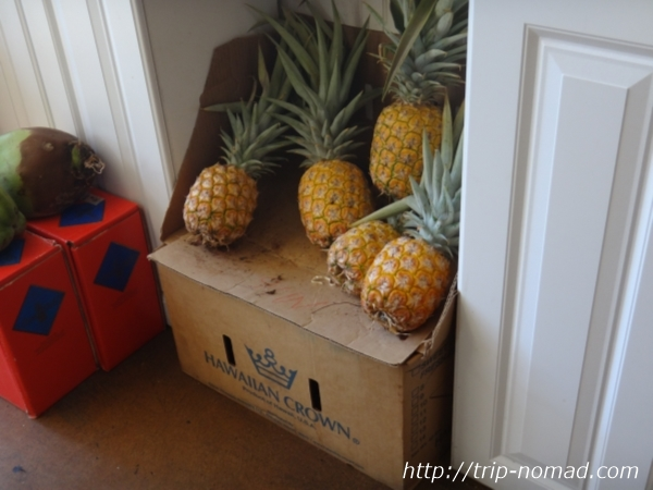『ハワイアン・クラウン・プランテーション』店内陳列パイナップル画像
