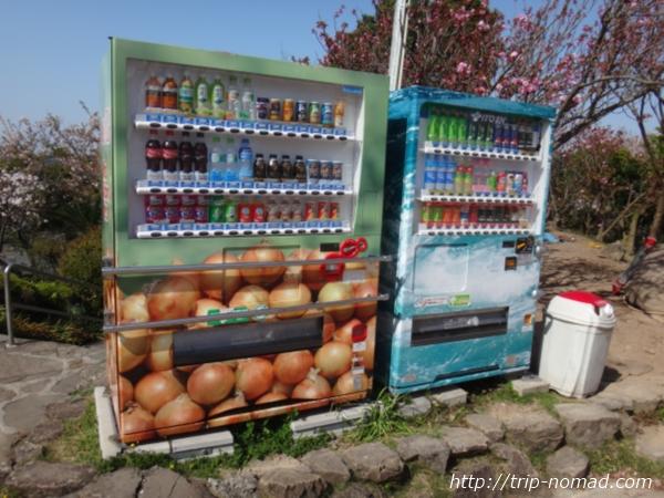 淡路島バーガー『オニオンキッチン』前にある玉ねぎラッピングの自動販売機画像