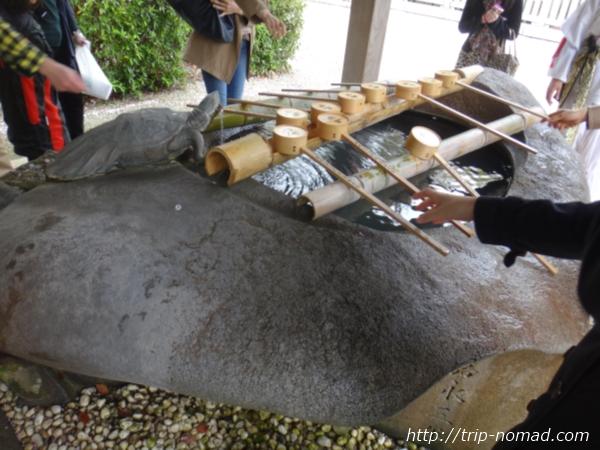 『伊弉諾神宮』亀の手水場画像