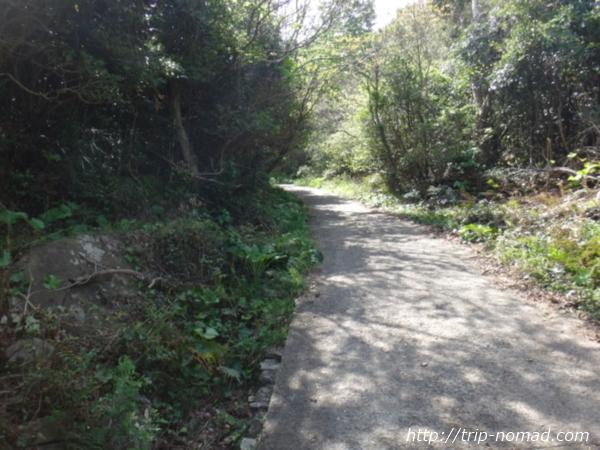 『上立神岩』までの道画像