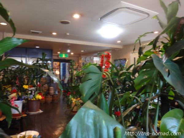 『喫茶ツヅキ』店内画像