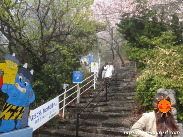 『鬼ヶ島大洞窟』入り口階段画像