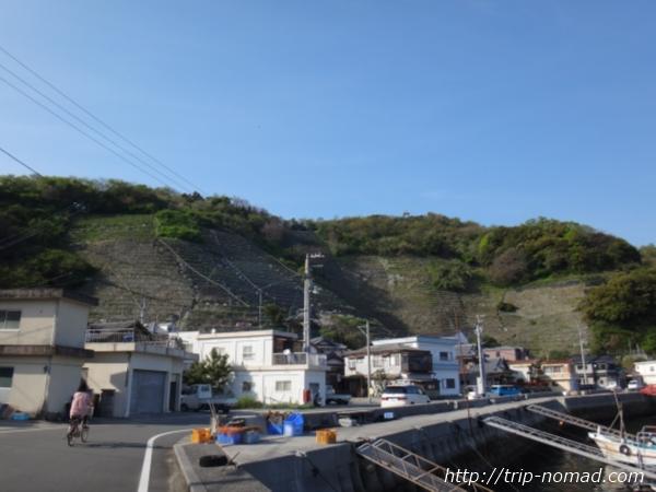 『遊子水荷浦の段畑』遠めからの画像