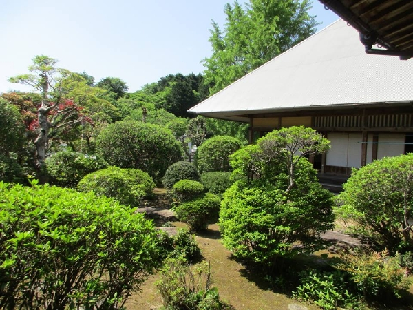 愛媛県宇和島市『古民家與那原家』お庭画像