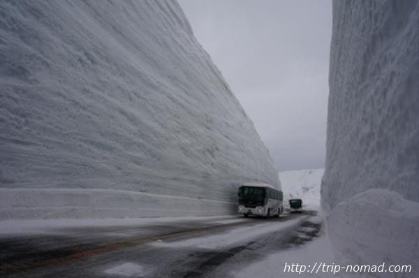 立山黒部アルペンルート『雪の大谷ウォーク』雪の壁バスとの高さ比較
