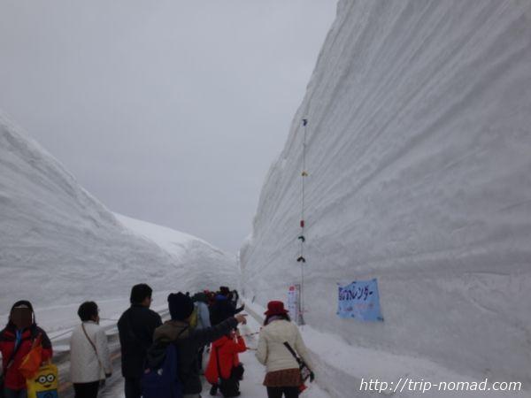 立山黒部アルペンルート『雪の大谷ウォーク』雪のカレンダーそば
