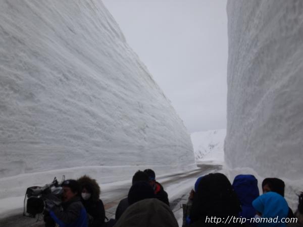 立山黒部アルペンルート『雪の大谷ウォーク』雪の壁がたかいエリア