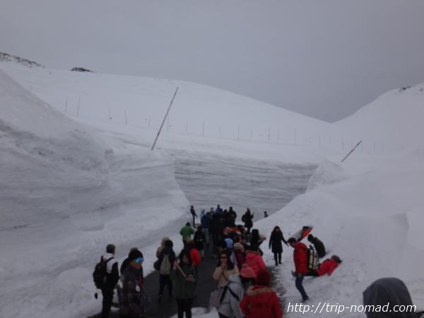 立山黒部アルペンルート『雪の大谷ウォーク』「アルプス広場」
