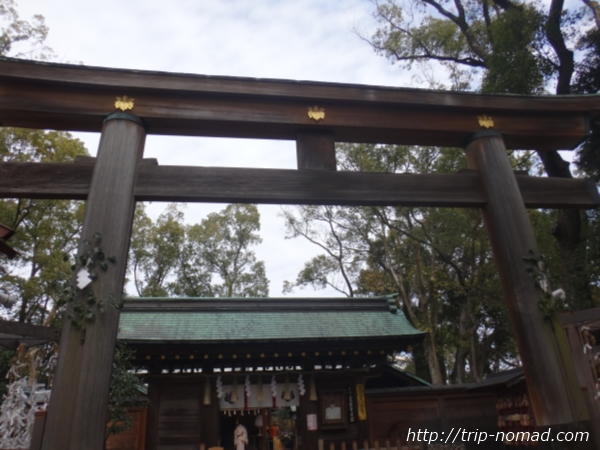 名古屋『豊国神社』本殿前鳥居