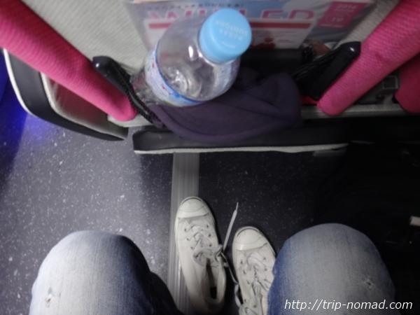 『WILLER EXPRESS(ウィラー・エクスプレス)』リラックス4列シート「前の席とのスペース」