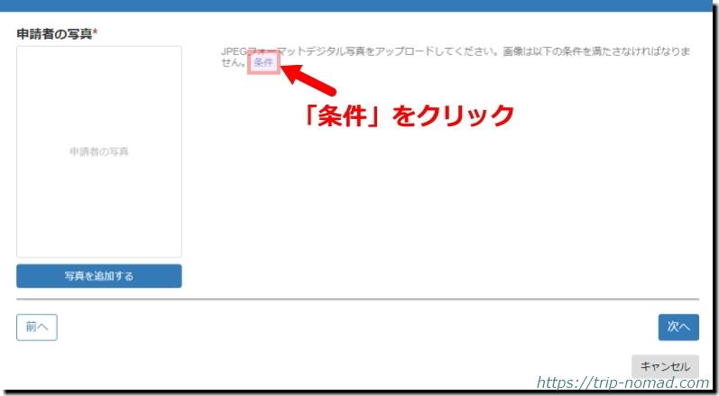 ロシアウラジオストク「電子簡易ビザ申請」申請者の写真満たすべき条件のボタン画像