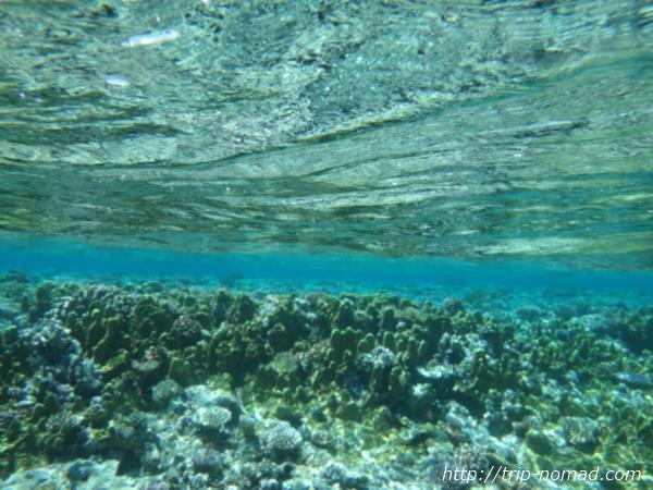 ジープ島キミシマ環礁画像