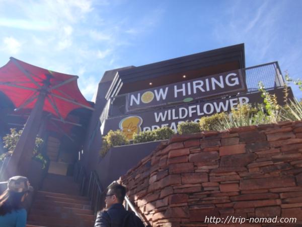 『ワイルドフラワーブレッドカンパニー(Wildflower Bread Company)看板』画像
