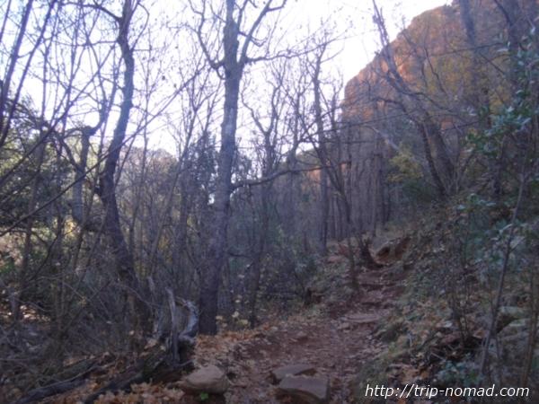 『Boynton vista Trail(ボイントンビスタトレイル)』画像