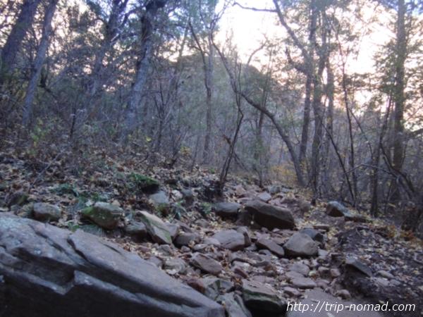 『ボイントンキャニオン(Boynton Canyon)』体験談画像