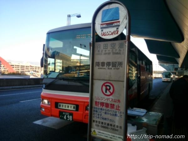 リムジンバスと京急はどっちがいい?東京シティエアターミナル(T-CAT)から羽田空港までを比較してみたよ