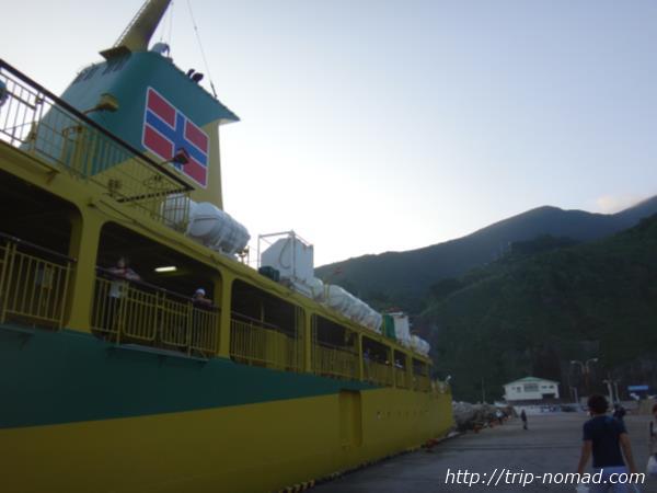御蔵島のイルカツアーが5分でわかる!【行き方(アクセス)&宿の予約方法まるわかり編】
