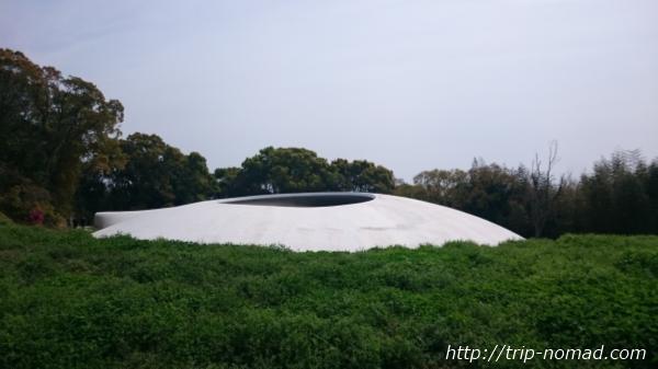 【体験談】『豊島美術館』に行ってきた!そこには想像を超えたアートが待ちかまえていた