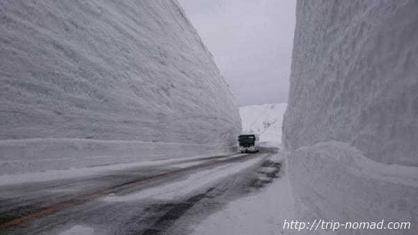 【体験談】立山黒部アルペンルート『雪の大谷』行ってきた!ツアー料金や時間、服装などまとめました!