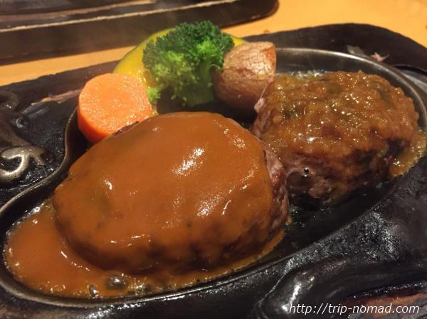 静岡県民が熱愛する『さわやか』で「げんこつハンバーグ」を実食!すいませんでした【静岡駅前・新静岡セノバ店】
