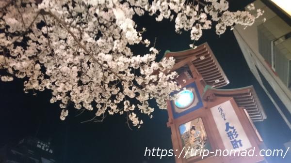 人形町にある桜を全部書いた!人形町・水天宮前のおススメお花見スポット【7選】!